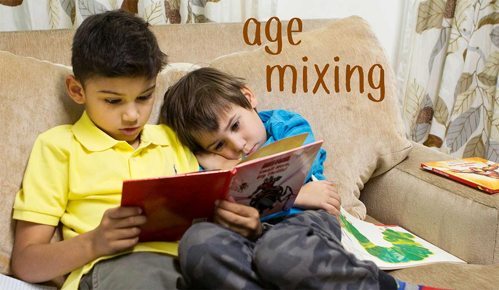 Benefits of Student Age Mixing at The Open School